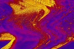 A micrografia abstrata colorida do musgo sae com uma torção Foto de Stock Royalty Free