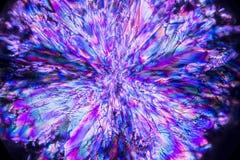 Micrografia abstrata de uma explosão de cristais da lisina da alfazema fotos de stock royalty free