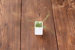 Microgreens na drewnianym tle zdrowe jeść Flance w białej wazie minimalista obrazy stock