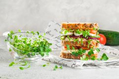 Microgreens sprouts of radish and cress in glass bowl near homemade sandwich