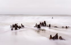 Stumps in flowing ocean surf stock images