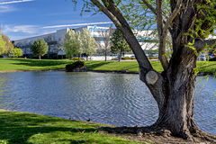 Micron Technology building frontage pond in spring Stock Photo