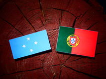 Micronesian flag with Portuguese flag on a tree stump isolated. Micronesian flag with Portuguese flag on a tree stump royalty free illustration
