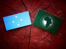 Micronesian flagga med afrikanska unionenflaggan på en isolat för trädstubbe royaltyfria bilder