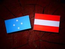 Micronesian flagga med den österrikiska flaggan på en trädstubbe royaltyfria foton