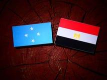 Micronesian flagga med den egyptiska flaggan på en trädstubbe fotografering för bildbyråer
