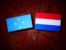 Micronesian flagga med den holländska flaggan på en isolerad trädstubbe fotografering för bildbyråer