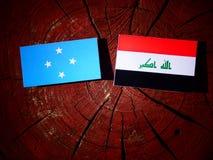 Micronesian flagga med den irakiska flaggan på en isolerad trädstubbe royaltyfri foto
