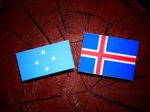 Micronesian flagga med den isländska flaggan på en isolerad trädstubbe royaltyfri bild