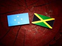 Micronesian flagga med den jamaikanska flaggan på en isolerad trädstubbe royaltyfria foton