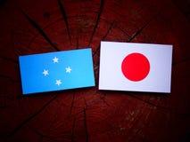 Micronesian flagga med den japanska flaggan på en isolerad trädstubbe fotografering för bildbyråer