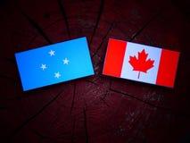 Micronesian flagga med den kanadensiska flaggan på en isolerad trädstubbe royaltyfria foton