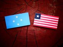 Micronesian flagga med den liberianska flaggan på en isolerad trädstubbe arkivbilder