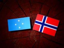 Micronesian flagga med den norska flaggan på en isolerad trädstubbe royaltyfri fotografi