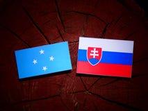 Micronesian flagga med den slovakiska flaggan på en isolerad trädstubbe royaltyfri fotografi