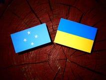 Micronesian flagga med den ukrainska flaggan på en isolerad trädstubbe fotografering för bildbyråer