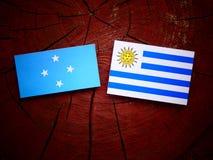 Micronesian flagga med den Uruguaian flaggan på en isolerad trädstubbe royaltyfri fotografi