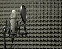 Microphone in Acoustic Booth Royalty Free Stock Photos
