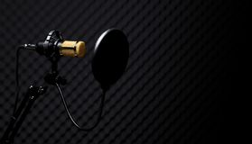 Microphone Condenser sound absorbing wall room stock photos