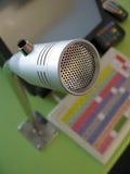 Microphone d'aliments de préparation rapide Photos libres de droits