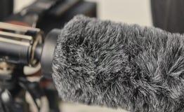 Microphone de fusil de chasse et protecteur de vent Photographie stock