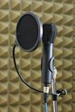 Microphone et écran protecteur dynamiques de bruit Images libres de droits