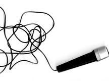 Microphone + fil de sortie Image stock