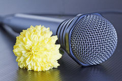 Microphone and flower Stock Photo