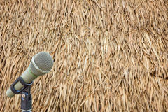 Microphone on a stand with blurred dried leaves of the cogon gra Royalty Free Stock Photos