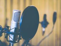 Microphone in studio or radio. Professional microphone in studio or radio Stock Photo