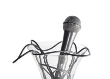 Microphone in the vase. Isolated on white Royalty Free Stock Photos