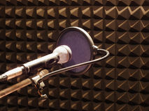 Microphone with windbreak in studio Royalty Free Stock Photography