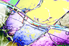 Microphoto of translucent structures in polarize Royalty Free Stock Image