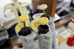 Micropipetas. Micropipettes in genetics laboratory, Spain Stock Photos