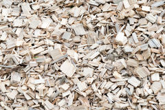 Microplaqueta de madeira Fotografia de Stock