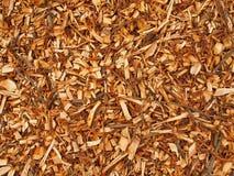 Microplaqueta de madeira molhada fresca da árvore de amieiro, textura Imagem de Stock