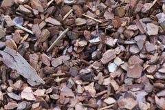 Microplaqueta de madeira pequena Fotos de Stock Royalty Free