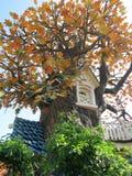 Microplaqueta e casa de árvore de Dale Imagem de Stock