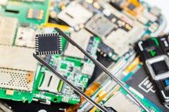 Microplaqueta eletrônica na pinça imagem de stock royalty free