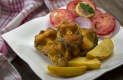 Microplaqueta fritada friável dos peixes e de batata Foto de Stock