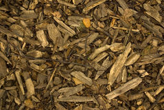 Microplaquetas de madeira foto de stock royalty free