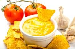 Microplaquetas de tortilha com mergulho do tomate e do queijo-alho fotografia de stock royalty free