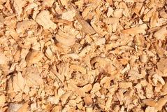 Microplaquetas do castor Imagem de Stock