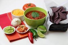 Microplaquetas e salsa Imagem de Stock Royalty Free