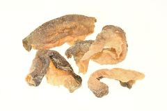 Microplaquetas secadas friáveis da pele dos peixes Fotografia de Stock