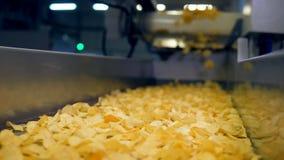 Microplaquetas transportadas no transporte automatizado após a fritura em uma facilidade de produção alimentar, movimento lento filme