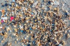 Microplastics fand auf dem Ufer eines Strandes in Lanzarote Seeverschmutzung durch Plastik lizenzfreies stockfoto