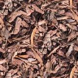 Microprocesadores de madera en la textura de tierra Fondo Imagen de archivo libre de regalías