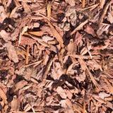 Microprocesadores de madera inconsútiles en la textura de tierra Fondo Imagenes de archivo