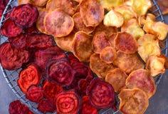 Microprocesadores vegetales secados coloridos del deshidratador imágenes de archivo libres de regalías